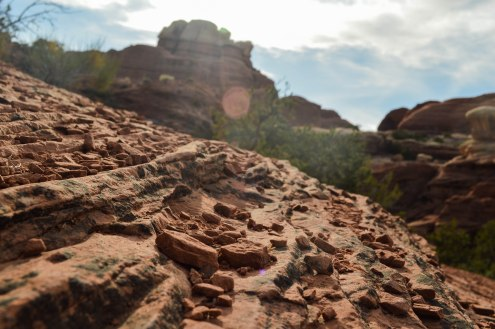 On a day hike in the Needles District in Moab, the sun decided to especially shine on a few rocks. Photo: Jillian Clemente.