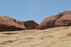 The beautiful contrast of the red rock versus the white
