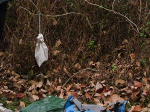 This cotton bag helped birds stay warm in the frigid weather. If birds stop flying for more than 20 minutes in these temperatures, they can die.