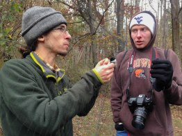 Mack handles and identifies the features of the Carolina Chickadee.