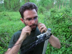 Need an extra hand to hold small mist net parts? Dr. Rota doesn't - he just uses his mouth.