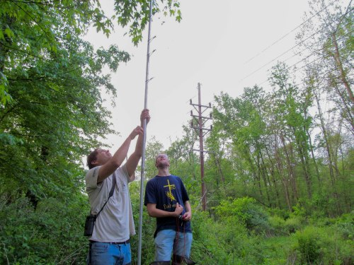 Dr. Lituma and Jimmy Hartley are finalizing the set up of the final mist net.
